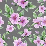 Beautiful rose hip flowers with leaves on gray background. Seamless floral pattern. Watercolor painting. Hand painted botanical illustration. Wallpaper Stock Illustration