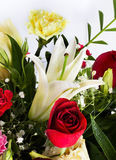 Beautiful rose, lilly and carnation flowers. Stock Photos