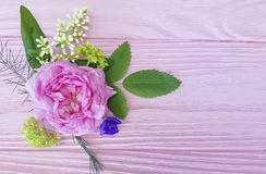 Beautiful rose natural composition vintage design festive on a pink wooden background frame. Beautiful rose natural composition frame a pink wooden decor festive stock images