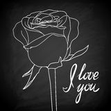 Beautiful rose outline drawn on the blackboard with the text Stock Photo