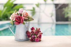 Beautiful rose paper flower in water tin pot over blurred swimming pool background Royalty Free Stock Photos