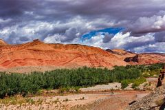 The beautiful Rose Valley - Vallee des Roses, near Ouarzazate, Morocco stock photography