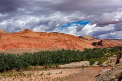 The beautiful Rose Valley - Vallee des Roses, near Ouarzazate, Morocco royalty free stock images