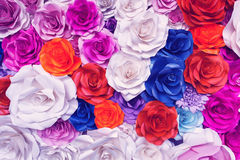 Beautiful rose wall made of colorful paper, valentines day backg Royalty Free Stock Images