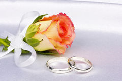 Beautiful rose and wedding rings. On a background white silk Stock Photo