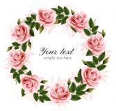 Beautiful rose wreath. Stock Image
