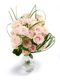 Beautiful Roses Royalty Free Stock Photos