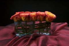 Beautiful roses arranged in a modern vase Royalty Free Stock Photography
