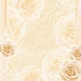 Beautiful Roses Background Royalty Free Stock Image