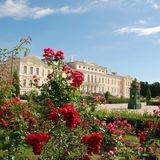 Beautiful roses and beautiful Baroque and Rococo. Rundale Palace is one of the most outstanding monuments of Baroque and Rococo art in Latvia. It was built Royalty Free Stock Images