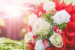 Beautiful roses. Beautiful roses background bouquet roses in various colors Royalty Free Stock Image