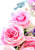 Beautiful Roses Border Stock Image