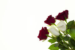 Beautiful roses in the bouquet, background for wedding cards, greeting card for birthday. Royalty Free Stock Images