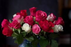 Beautiful roses bouquet. At the dark background. Selective focus royalty free stock image