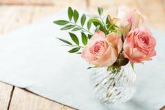 Beautiful roses Stock Photography