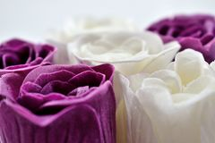 Violet and white roses close up