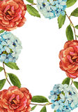 Beautiful roses flower watercolor frame Royalty Free Stock Images