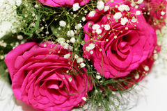 Beautiful roses formed into a beautiful bouquet Stock Photo