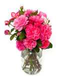 Roses in jar Royalty Free Stock Photo