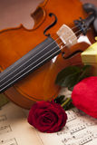 Beautiful roses, heart and violin! Stock Photos