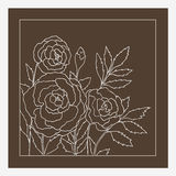 Beautiful roses isolated on dark beige background. Hand drawn vector illustration. Royalty Free Stock Images