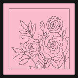Beautiful roses isolated on soft pink background. Hand drawn vector illustration. Stock Image
