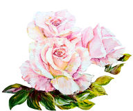 Beautiful Roses, oil painting on canvas Stock Photos