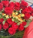 Beautiful roses Royalty Free Stock Photo