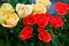 Beautiful roses for sale at a shop. Stock Photo