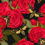 Beautiful roses seamless Royalty Free Stock Photo