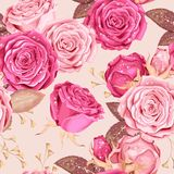 Beautiful roses seamless. Beautiful roses with drops of dew vector seamless background Royalty Free Stock Images