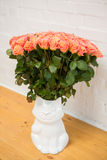 Beautiful roses in a vase-cat Stock Photos