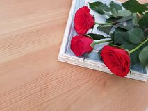 Beautiful Roses With A Vintage Frame stock photo