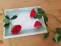 Beautiful Roses With A Vintage Frame royalty free stock photography