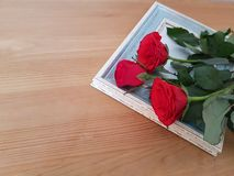 Beautiful Roses With A Vintage Frame. Red roses with a vintage frame laying on a wooden background, Mothers day, Thank you card, Friendship, Love stock photos