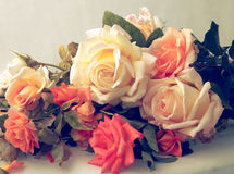 Beautiful Roses.Vintage styled royalty free stock photography