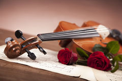 Beautiful roses and violin! Royalty Free Stock Photo