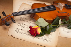 Beautiful roses and violin! Stock Photos