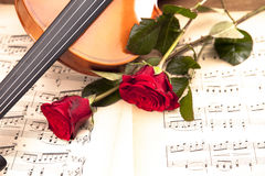 Beautiful roses and violin! Stock Photo