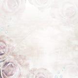Beautiful Roses wedding  Background Stock Images