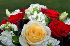 Beautiful roses wedding bouquet Stock Photography