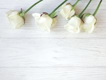 Beautiful roses blossom greeting romantic border on white wooden background frame. Beautiful roses white wooden background frame border blossom romantic greeting royalty free stock photo