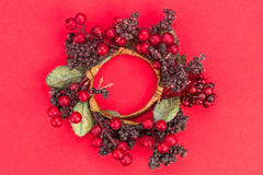 Beautiful round Christmas garland on red background. Royalty Free Stock Photos