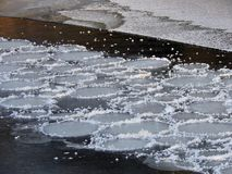 White round ice pieces on river current, Lithuania Royalty Free Stock Photo