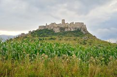 Beautiful ruins castle on the hill. Spissky Hrad castle in Slovakia royalty free stock photography