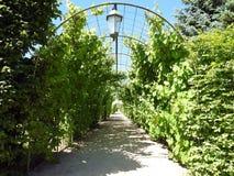 Beautiful Rundale palace park, Latvia Stock Photo