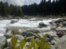Beautiful Running River stock photography