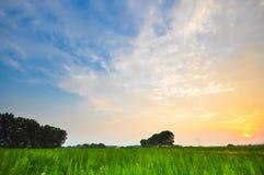 Beautiful rural italian landscape in the sunset Stock Photo