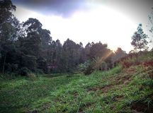 Beautiful Rural Kenyan Evenings Royalty Free Stock Images