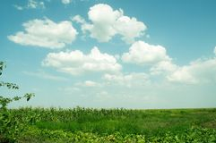 Beautiful rural landscape Royalty Free Stock Image